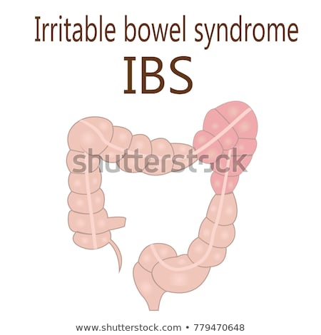 intestino · síndrome · mulher · para · cima · quarto - foto stock © eddows_arunothai