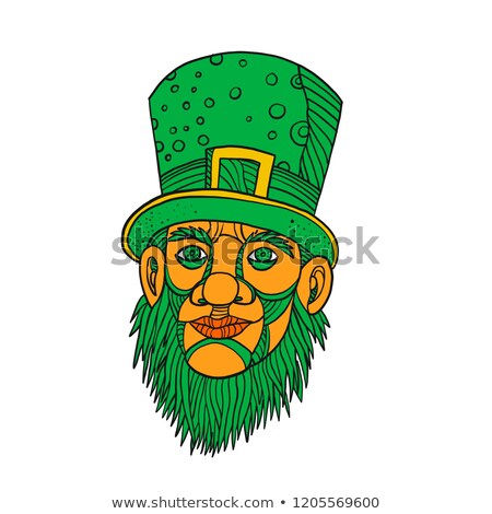 Irish Leprechaun Mono Line Stock photo © patrimonio