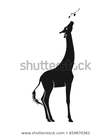 Szett zsiráf eszik illusztráció háttér sziluett Stock fotó © colematt