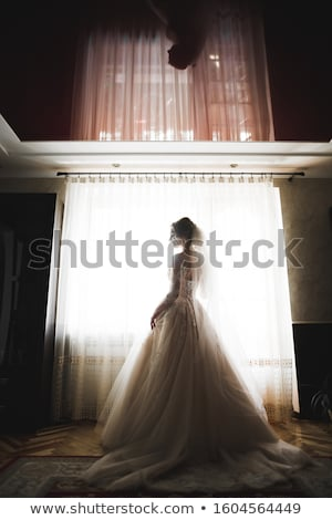 Beauty portrait of bride wearing fashion wedding dress with feathers with luxury delight make-up Stock photo © ruslanshramko