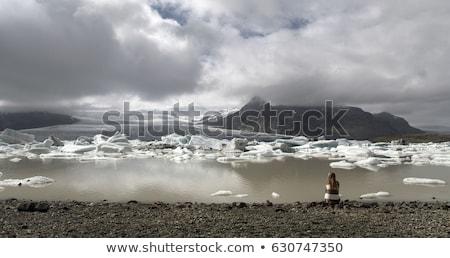 Seyahat arktik manzara doğa turist adam Stok fotoğraf © Maridav