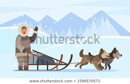 Inuit Person Traveling on Sleds with Husky Dogs Stock photo © robuart