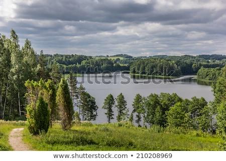 Parque Lituânia ponte lago céu natureza Foto stock © borisb17
