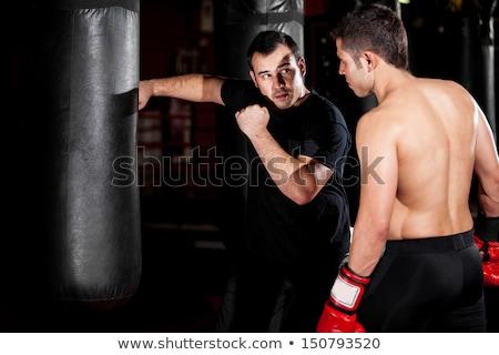 Боксер истребитель практика успех бокса победу Сток-фото © Jasminko