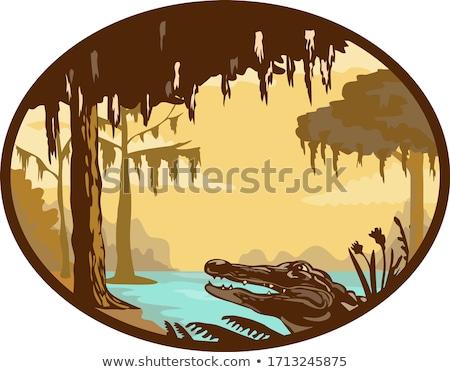 Louisiana jacaré oval retro estilo ilustração Foto stock © patrimonio