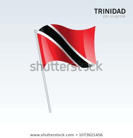 trinidad and tobago flag, vector illustration on a white background Stock photo © butenkow