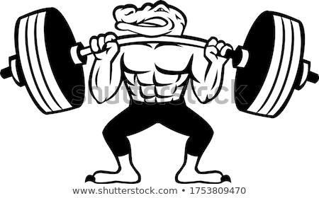 Aligátor súlyemelő emel nehéz súlyzó kabala Stock fotó © patrimonio