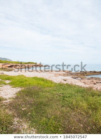 Shingle background (vertical shot) Stock photo © pashabo
