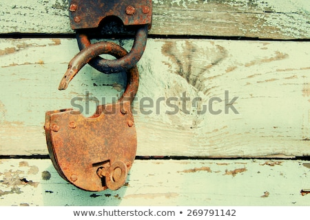 rozsdás · lakat · akasztás · fém · kapu · retro - stock fotó © ruslanomega