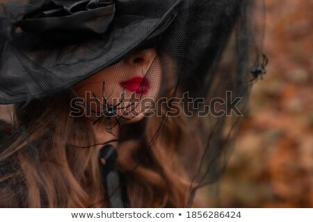 Young witch in veil hat  Stock photo © Elisanth