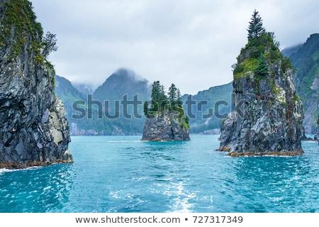 Porcupine Bay in Alaska Stock photo © wildnerdpix