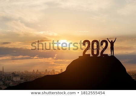 Vooruitzicht vrouw naar wolkenkrabbers hemel kantoor Stockfoto © photocreo