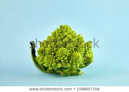 yeşil · kabarcıklı · detay · tam · kare · soyut - stok fotoğraf © prill