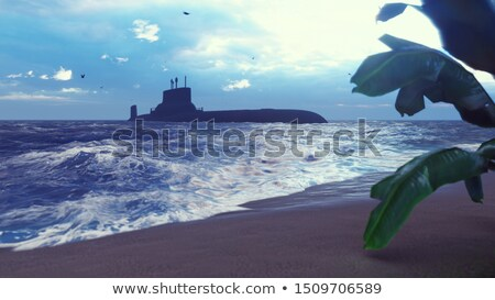 Stock fotó: Submarine Near The Tropical Island