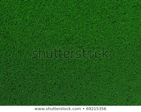 Voetbalveld toonhoogte voetbal sport kunst Stockfoto © experimental