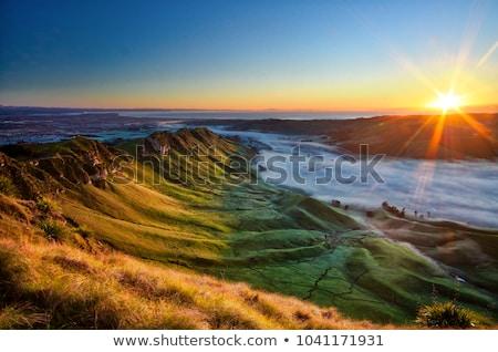 Sunset New Zealand Coast Stock photo © vichie81