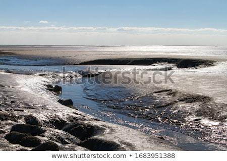 海 北 ビーチ 水 風景 砂 ストックフォト © Arrxxx