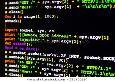 DDOS Attack Concept. Stock photo © tashatuvango