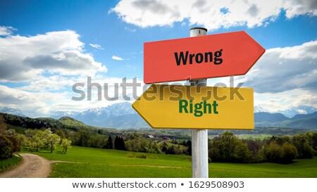 Téves irányítás felirat zöld közlekedési tábla új Stock fotó © Lightsource