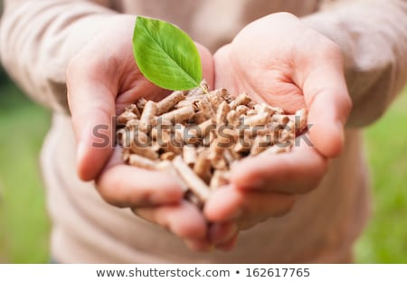 wood pellets and shovel Stock photo © rmarinello