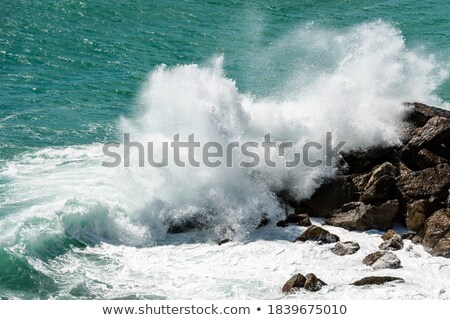 Coastal breaker wave splashing rocks Stock photo © jrstock