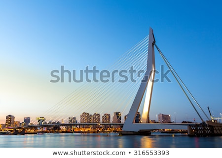 erasmus bridge on meuse river rotterdam stock photo © macsim