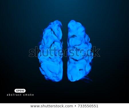 enfumaçado · cérebro · preto · medicina · ciência · energia - foto stock © Vladimir