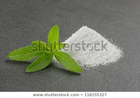 Stevia leaves on a slate plate Stock photo © Zerbor