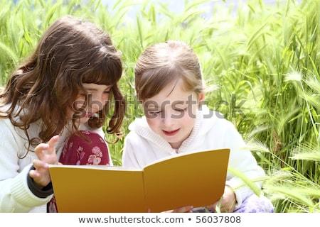 meisje · park · spelen · bloem · glimlach · kinderen - stockfoto © lunamarina