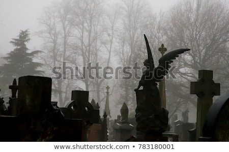 Graveyard Angel Stock photo © chrisdorney