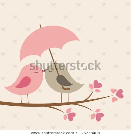 kissing birds stock photo © beaubelle