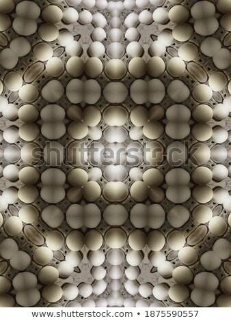 Tojás fraktál fraktálok absztrakt technológia szépség Stock fotó © ankarb