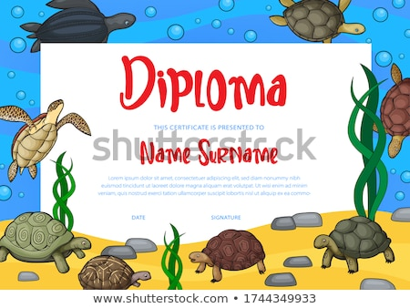 turtle graduate Stock photo © adrenalina