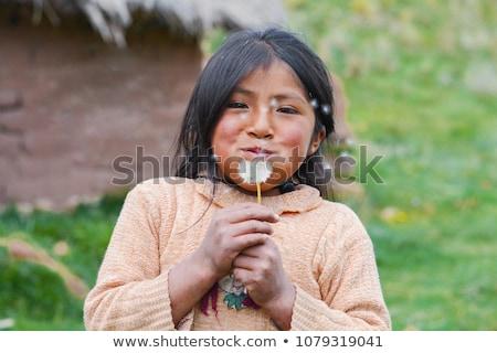 Nativo indiano pessoas cabeça mascote Foto stock © anbuch