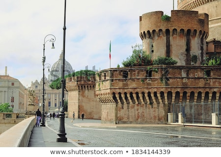 View of the Vatican with Saint Peter's Basilica and Sant'Angelo' Stock photo © bloodua