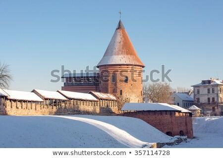 Castillo Lituania cielo árbol verano azul Foto stock © 5xinc