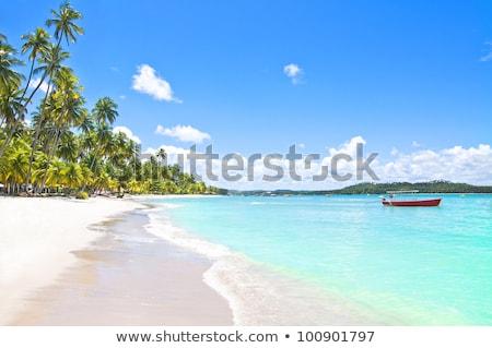 Yaz tatili Brezilya plaj kişi kart Stok fotoğraf © stevanovicigor