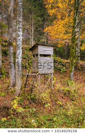 Typical hunters tower on the meadow Stock photo © CaptureLight