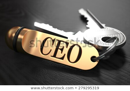 ceo   bunch of keys with text on golden keychain stock photo © tashatuvango