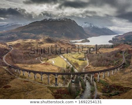 vapeur · train · Écosse · bord · été · vert - photo stock © photopb