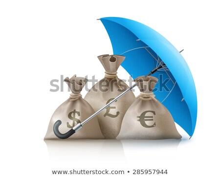 Guarda-chuva dinheiro moedas dólar euro libra Foto stock © LoopAll