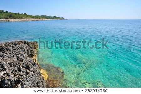 wild beach in pula croatia stock photo © master1305