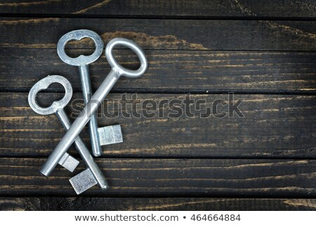 three keys stock photo © shutswis