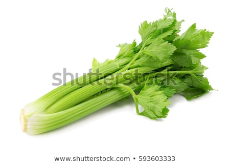 fresh green celery isolated on white Stock photo © tetkoren