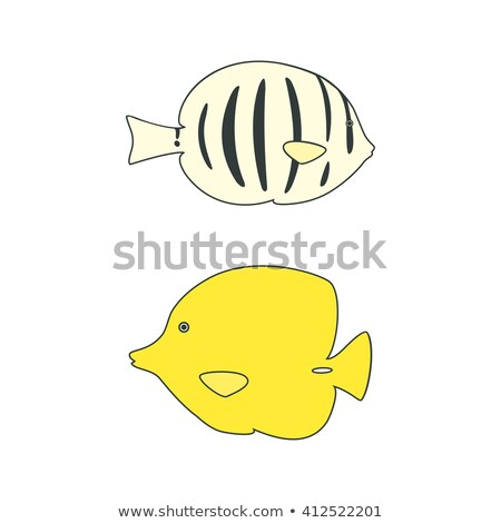 Convict Tang, Color Illustration Stock photo © Morphart