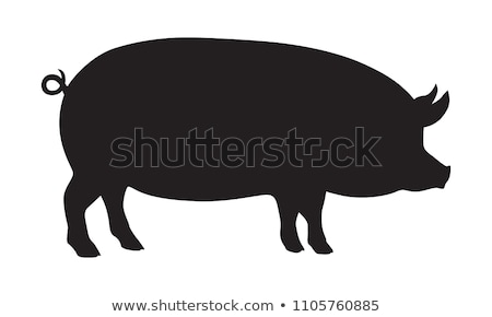 pig silhouette Stock photo © Istanbul2009