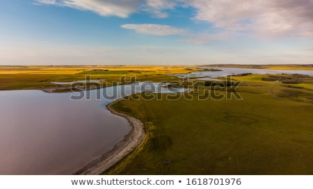 naplemente · vidéki · Saskatchewan · jávorszarvas · állkapocs · farm - stock fotó © pictureguy