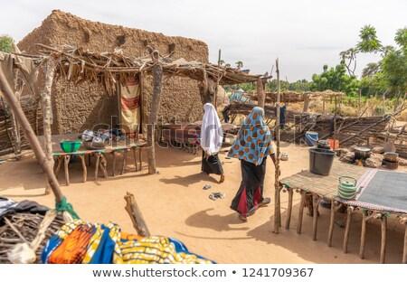 Niger paese bandiera mappa testo Foto d'archivio © tony4urban