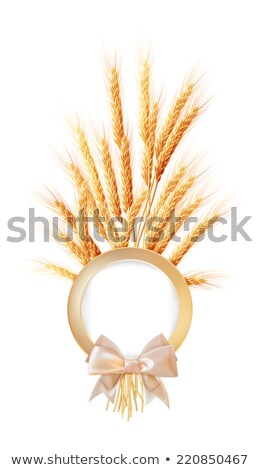 ストックフォト: 耳 · 小麦 · 場所 · 文字 · eps · 10