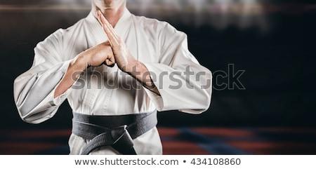 Vechtsporten vechter mannelijke sport oefening macht Stockfoto © MilanMarkovic78